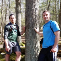 0Treeple two guys and their tree